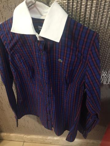 f6a496a8a2515 Camisa feminina Lacoste original promoção - Roupas e calçados ...