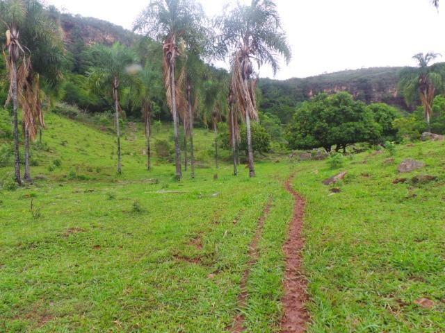 Fazenda 15 Alqueires Municipio Cocalzinho Aceita Imovel até 200 mil - Foto 20