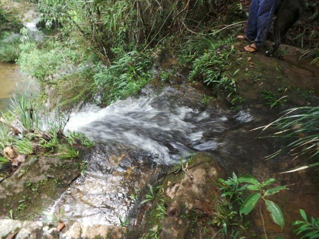 Fazenda 132 Alqueires Municipio Cocalzinho Aceita proposta - Foto 16