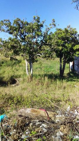 Lu Terreno no Bairro Monte Alegre em Cabo Frio - Foto 6