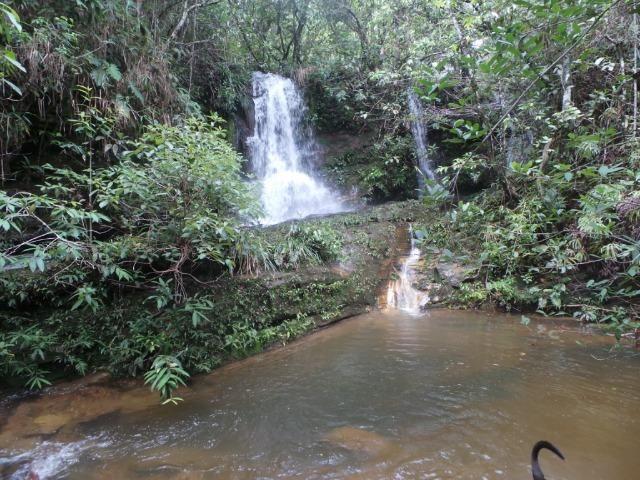 Fazenda 132 Alqueires Municipio Cocalzinho Aceita proposta - Foto 9