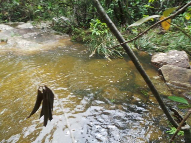 Fazenda 132 Alqueires Municipio Cocalzinho Aceita proposta