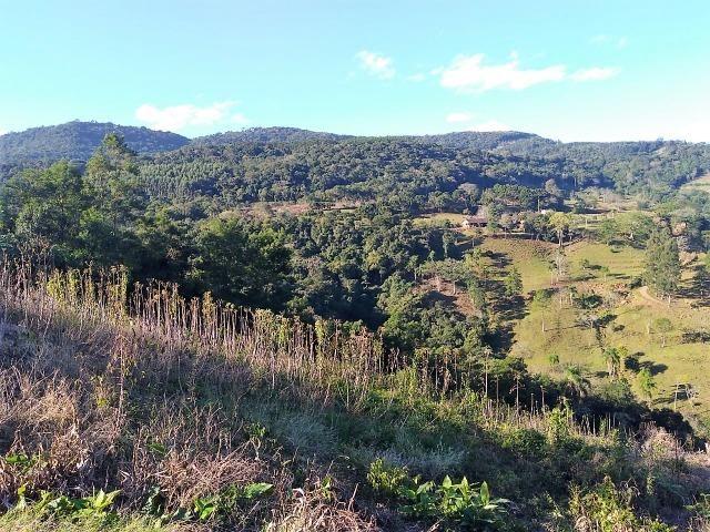 Terrenos com Vista e Boas Dimensões em Morro Reuter - Foto 4