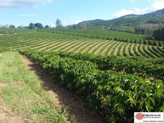 Fazenda Café Sul de Minas