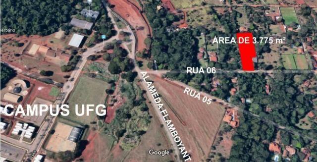 Área 3.775 m² Próximo a UFG Campus Samambaia P/ Lazer e moradia! Oportunidade - Foto 2