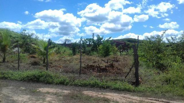 Terreno em Cocal - Foto 3