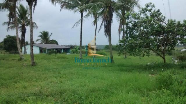 Fazenda à venda, 890000 m² por r$ 1.300.000 - teixeira do progresso - mascote/ba - Foto 8