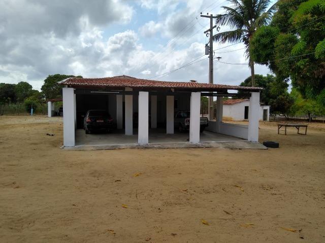 Granja com 4 há em bom jesus com 3 casas e outra em construção, piscina, galpão - Foto 12