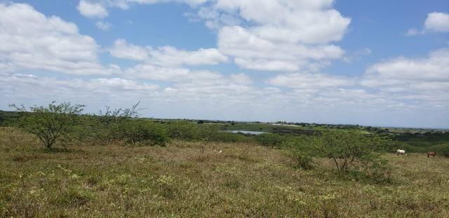 Fazenda com 80 hectares entre brejinho e santo Antônio do salto da onça - Foto 7
