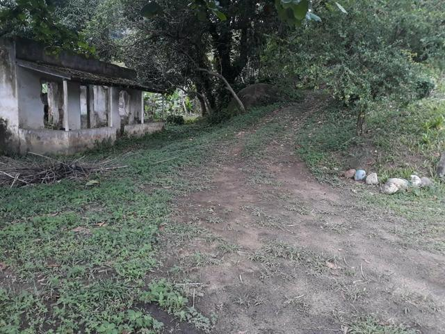Excelente área com galpão em Guapimirim - Citrolândia oportunidade!!! - Foto 6