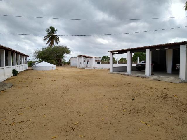 Granja com 4 há em bom jesus com 3 casas e outra em construção, piscina, galpão - Foto 4
