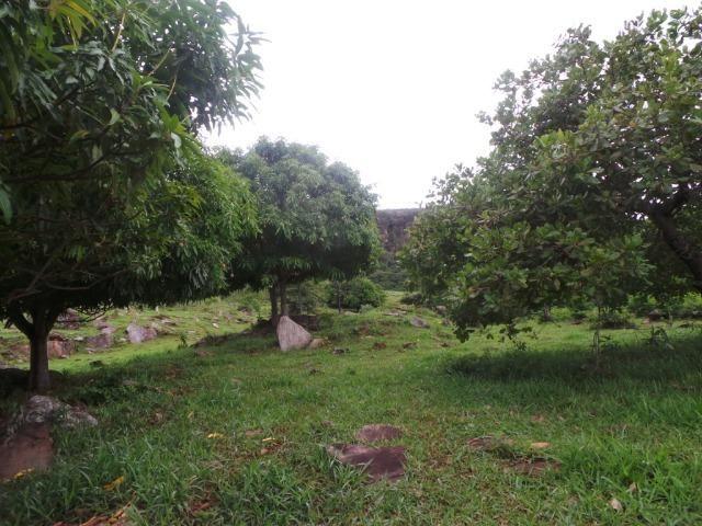 Fazenda 15 Alqueires Municipio Cocalzinho Aceita Imovel até 200 mil - Foto 15