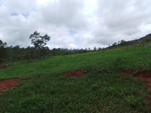 Fazenda 15 Alqueires Municipio Cocalzinho Aceita Imovel até 200 mil - Foto 3