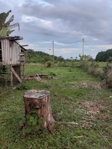 Vende-se terreno em local bem valorizado e tranquilo - Foto 3