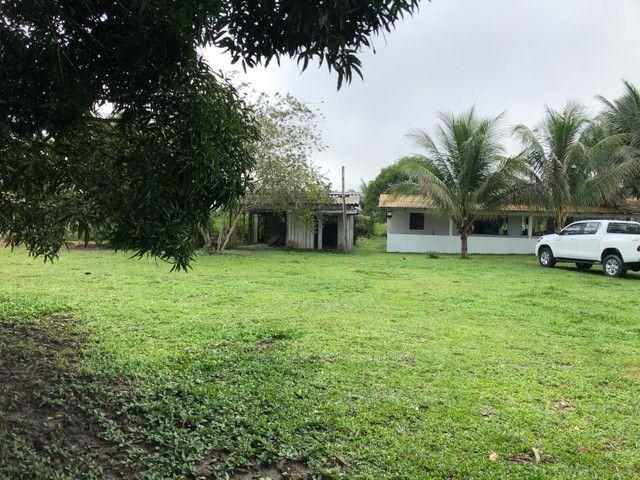 Vendo linda fazenda com 890 hectares na AM-010  liga os municípios de Manaus, Rio Preto  - Foto 4