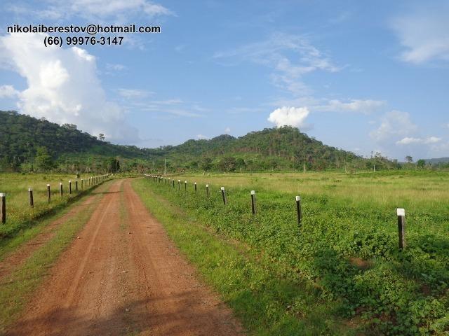 Fazenda 807 hectares nordeste mt nikolaiimoveis
