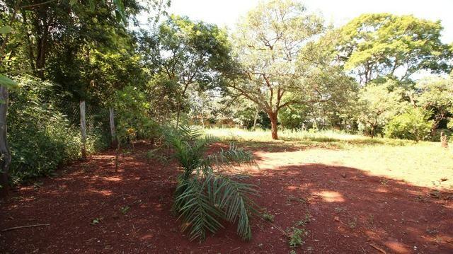 Área 3.775 m² Próximo a UFG Campus Samambaia P/ Lazer e moradia! Oportunidade - Foto 11