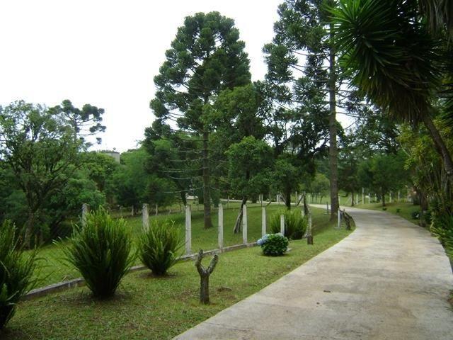 Residencial Piraquara - Chácara - Foto 19