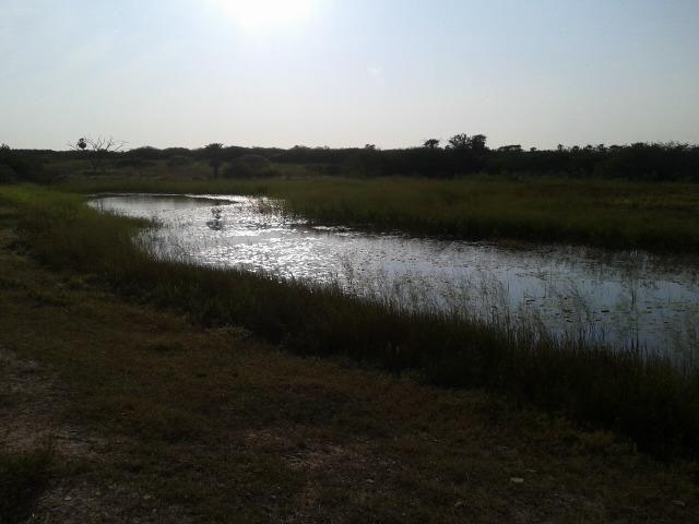 Granja com 11 há em mandú, lagoa de pedras - Foto 8