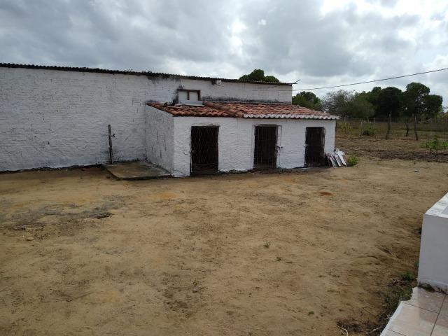 Granja com 4 há em bom jesus com 3 casas e outra em construção, piscina, galpão - Foto 9