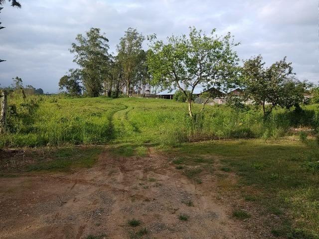 Área Rural em Joinville 105.472,71 m2 - Foto 4
