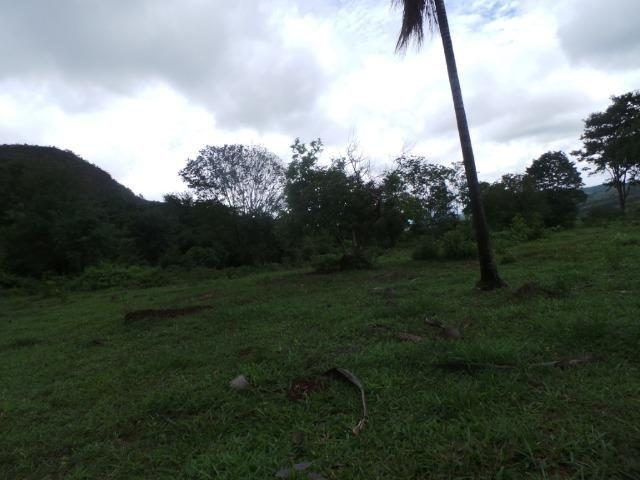 Fazenda 15 Alqueires Municipio Cocalzinho Aceita Imovel até 200 mil - Foto 2