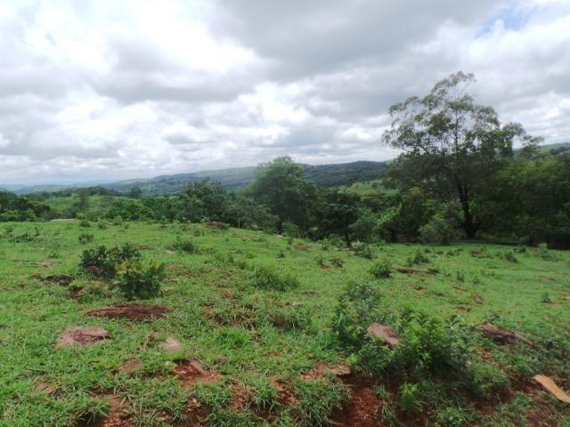 Fazenda 15 Alqueires Municipio Cocalzinho Aceita Imovel até 200 mil - Foto 8