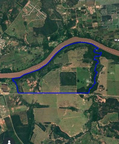4 km de margens do Rio Araguaia. Fazenda 96 alqueires 464.64 Hectares - Aragarças-GO - Foto 2