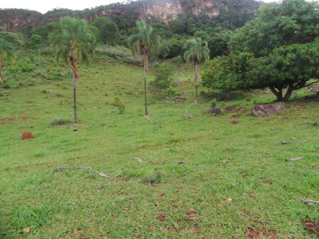 Fazenda 15 Alqueires Municipio Cocalzinho Aceita Imovel até 200 mil - Foto 13