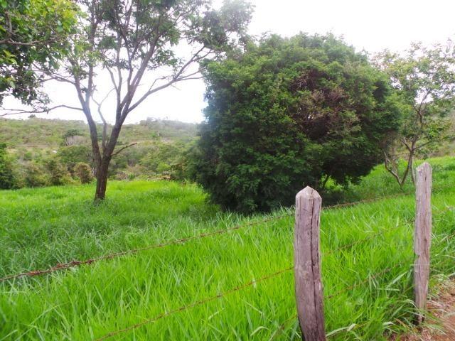 Fazenda 132 Alqueires Municipio Cocalzinho Aceita proposta - Foto 8