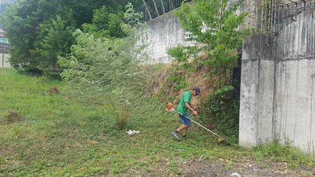 Corte de grama e limpeza de terreno - Foto 4