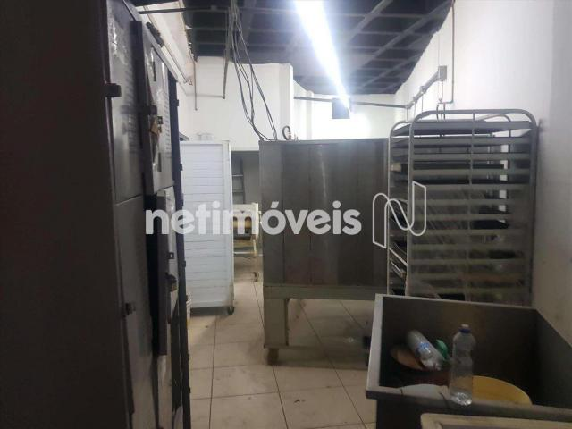 Loja comercial para alugar em Grajaú, Belo horizonte cod:788315 - Foto 8