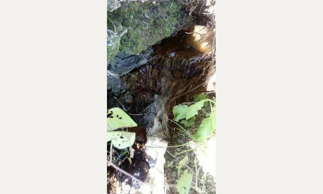 Lindo sítio em Cachoeiras de Macacu RJ 122 oportunidade!!! - Foto 9