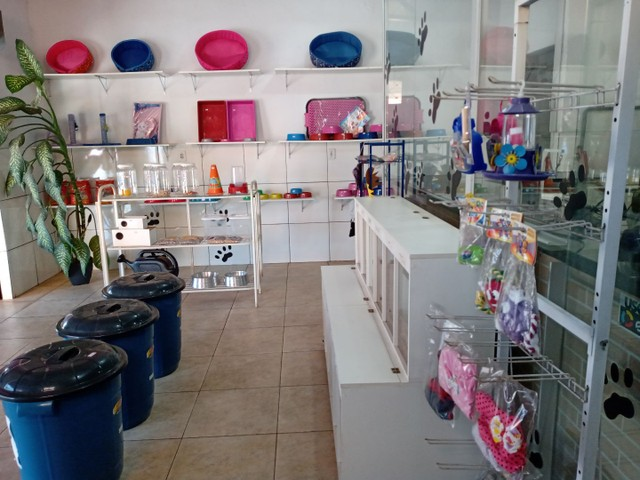 Pet shop - Foto 5