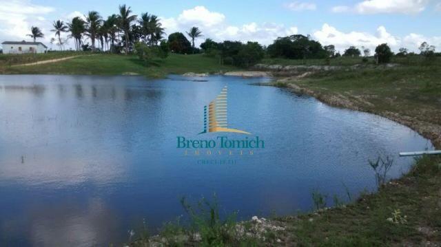Fazenda à venda, 890000 m² por r$ 1.300.000 - teixeira do progresso - mascote/ba - Foto 3