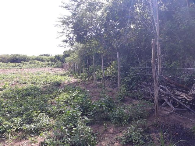 Terreno na Empreendimento na estaca zero/Lagoinha - Foto 9