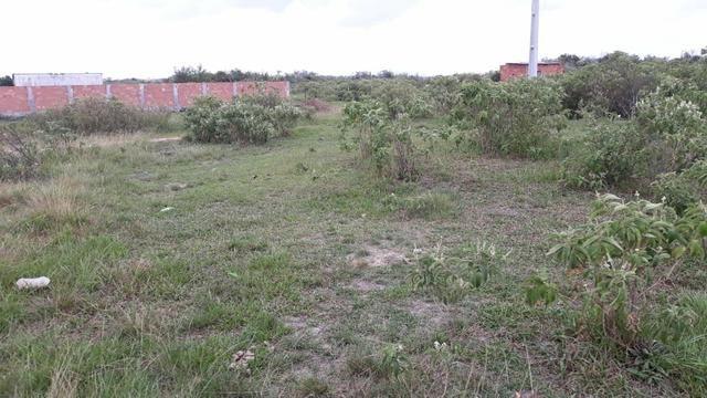 Ll Terreno Localizado na Estrada de São Jacinto. - Foto 3