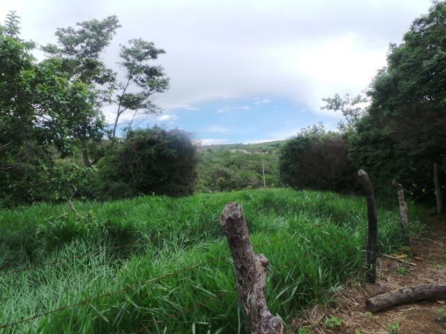Fazenda 132 Alqueires Municipio Cocalzinho Aceita proposta - Foto 15