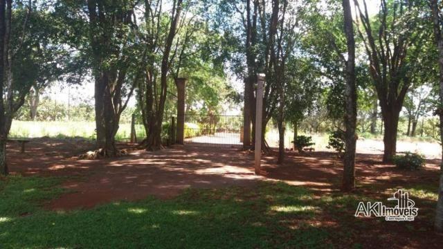 Chácara com 3 dormitórios à venda, 10.000 m² por R$ 1.100.000 - Área Urbanizada II no Anel - Foto 11
