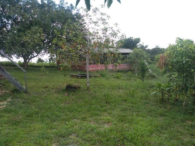 Vendo uma Chácara 14 hectares na BR 364 - Foto 2