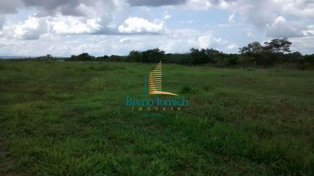 Fazenda à venda, 890000 m² por r$ 1.300.000 - teixeira do progresso - mascote/ba - Foto 15