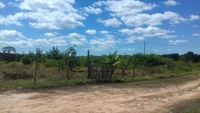 Terreno em Cocal - Foto 2