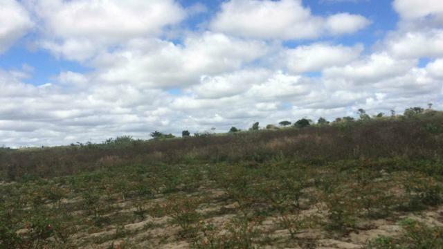 Oportunidade!! Terreno no Entroncamento de Jaguaquara - Foto 2