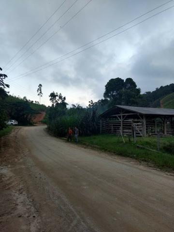Oportunidade, sitio de 17.000 m² no Caetés interior de Camboriú 14 km da cidade por apenas - Foto 9