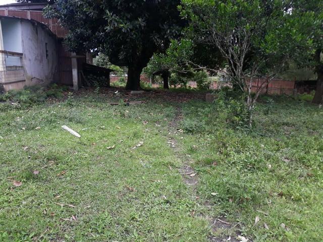 Excelente área com galpão em Guapimirim - Citrolândia oportunidade!!! - Foto 13
