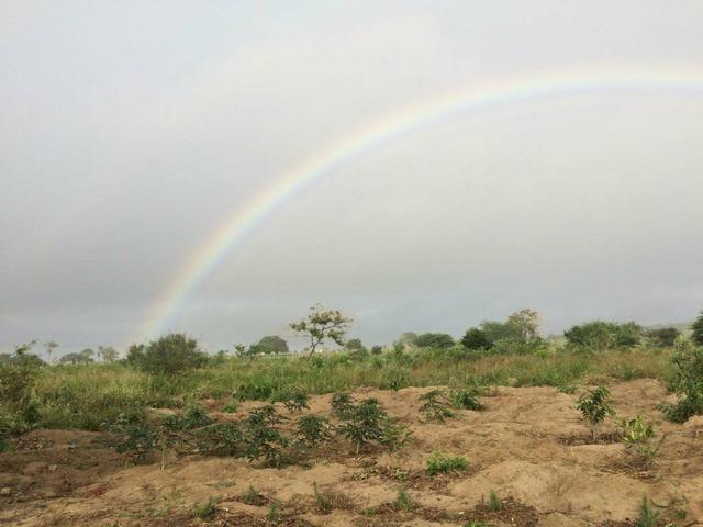 Oportunidade!! Terreno no Entroncamento de Jaguaquara