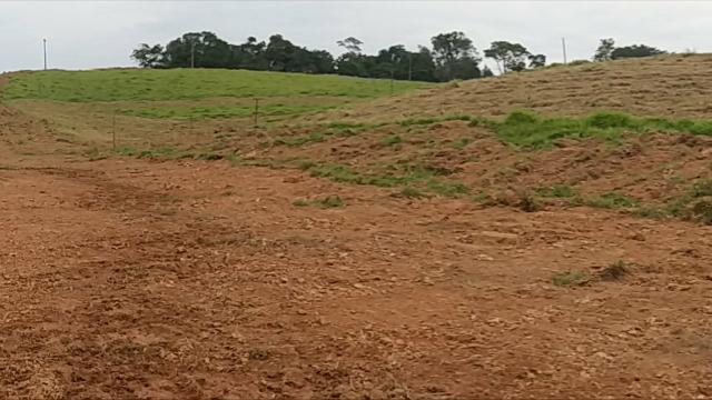 Terrenos Rurais, Ótima Topografia - Foto 2