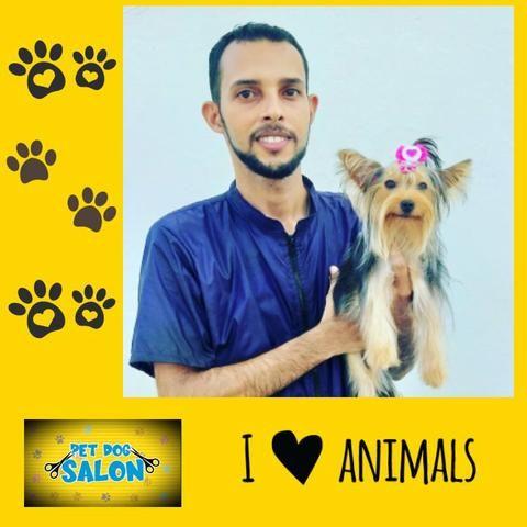 Pet dog salon