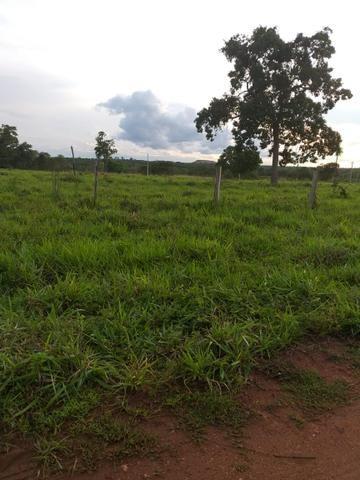Fazenda 500 Alqueiro Aberto - Foto 2