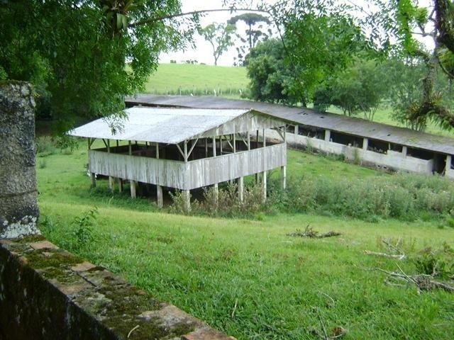 Residencial Piraquara - Chácara - Foto 15